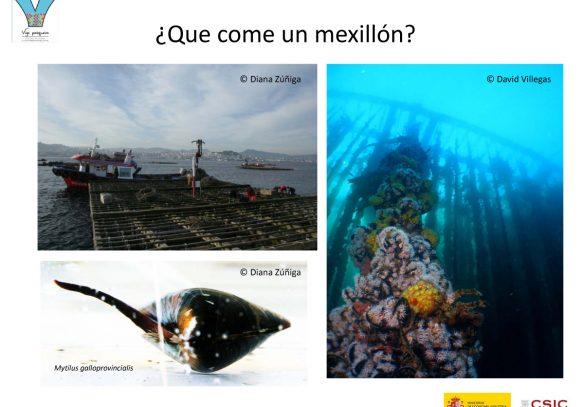 Microsoft PowerPoint - RUTA TURISMO CIENTêFICO_v1